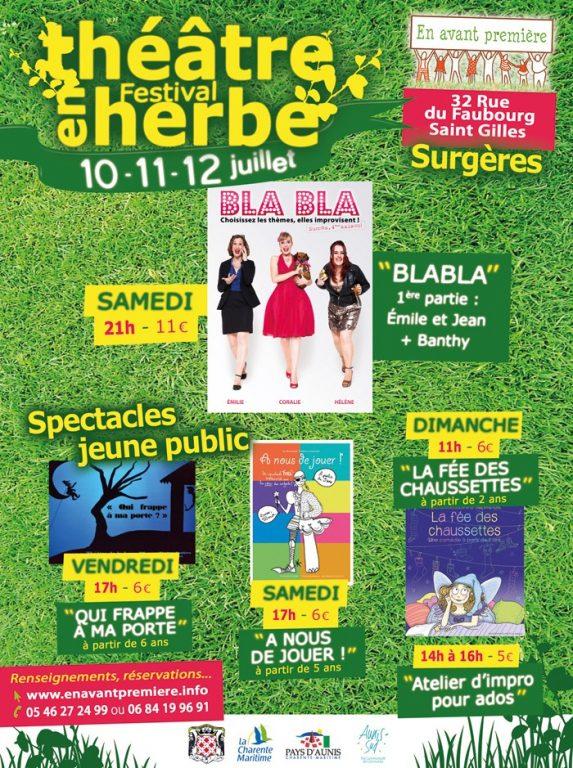 Festival-Théâtre-en-herbe-2015